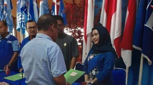 Kursi Ketua, Suraidah Berlanjut di DPRD Provinsi