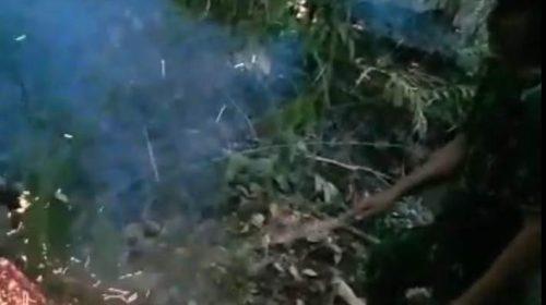 Daerah Malunda Landa Kebakaran Hutan