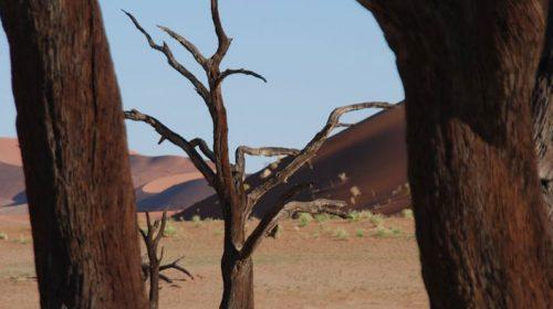 Travel in Namibia: Like Walking on Mars