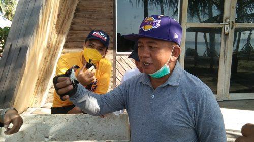Yusri: Pemda Polman Dukung Pelestarian Penyu