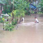 Sepuluh Hektare Lahan Warga di Malunda Terendam Banjir