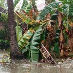Angin Kencang, Tower Internet di Malunda Tumbang